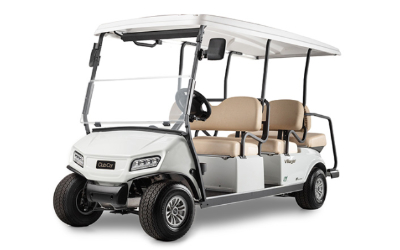 6 Passenger Golf Cart Rental Orlando Golf Cart Rentals Company